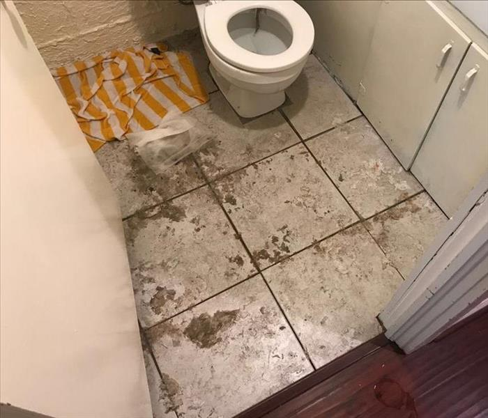 Sewage Damage Before