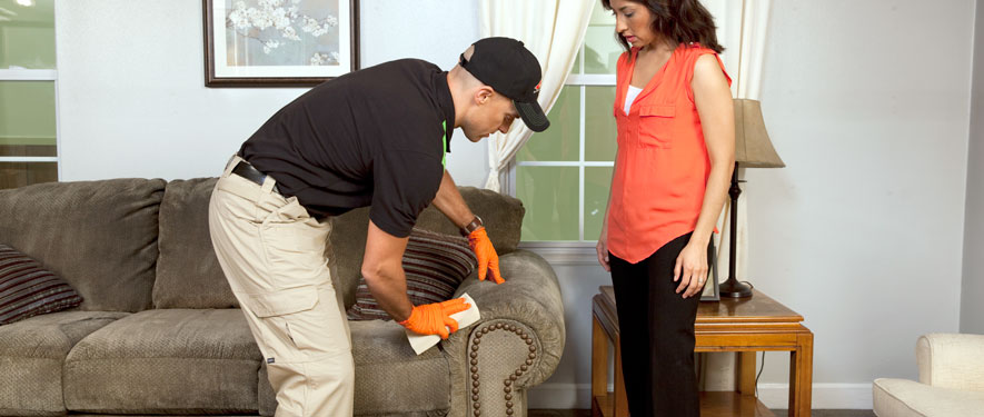 Alexander City, AL carpet upholstery cleaning